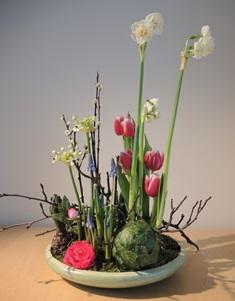 Voorjaarsschikking-bladbollen