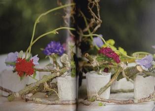 Takkenframe-bloemen